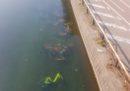 La foto delle bici dei bikesharing di Milano buttate in acqua
