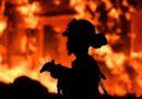 I grandi incendi nel nord della California