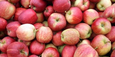 Come lavare meglio le mele, secondo la scienza