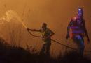 Almeno 27 persone sono morte per gli incendi in Portogallo
