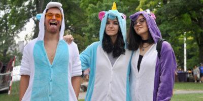 Perché ci sono unicorni dappertutto