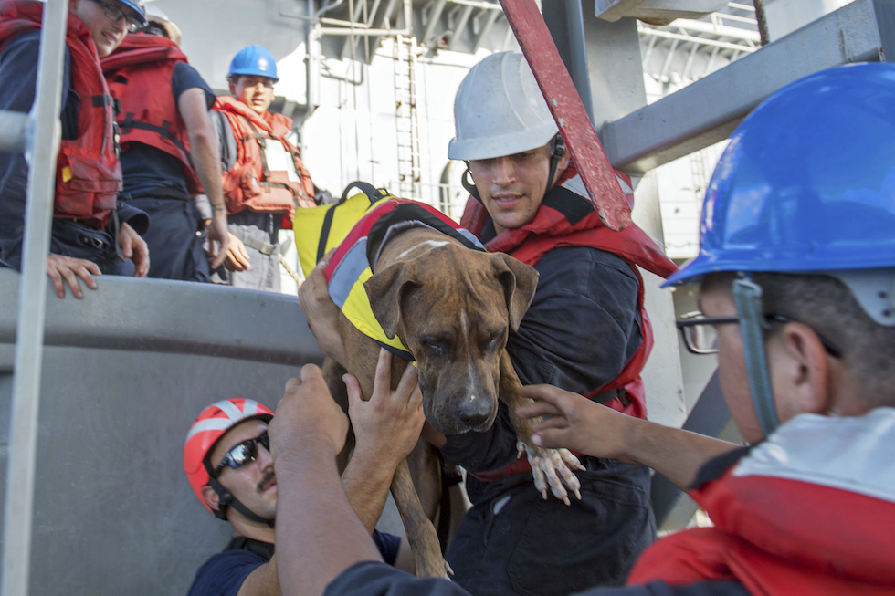 Oceano Pacifico, due veliste salvate dopo cinque mesi alla deriva