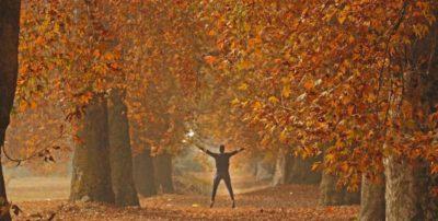 Il bello dell'autunno è fotografarlo