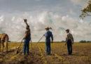 """""""Mudbound"""" vale cinema"""