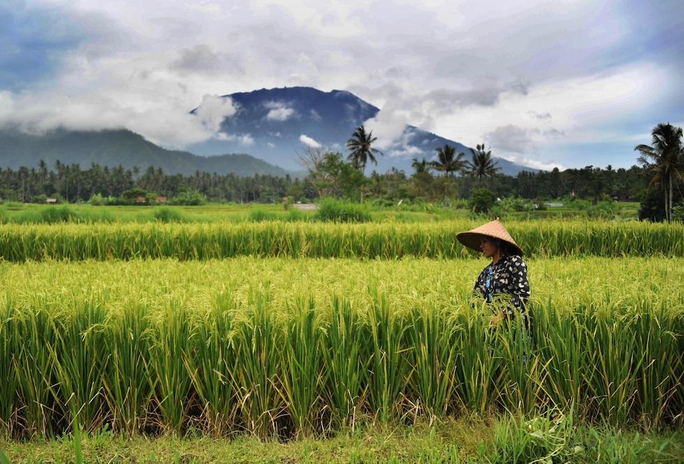 Bali, paura per il vulcano aeroporti chiusi