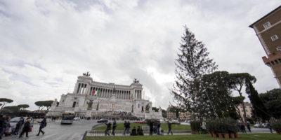 Il vero problema dell'albero di Natale di Roma non è che è spelacchiato