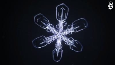 Avete mai visto come si forma un fiocco di neve?