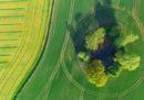 Come funziona il bio e il tech in agricoltura?