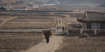 Foto da una Corea del Nord diversa