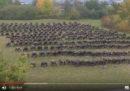 La Germania ha provato a risolvere i suoi problemi con l'esercito con un reality show
