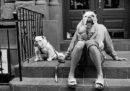 Fotografie famose spiegate da un grande fotografo