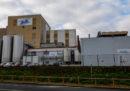 Lactalis ha disposto il ritiro dal mercato del suo latte in polvere nel timore che sia contaminato da salmonella
