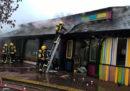 C'è stato un incendio nello zoo di Londra: sei persone sono ferite e un animale è morto