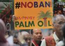 Ci sono due novità sull'olio di palma
