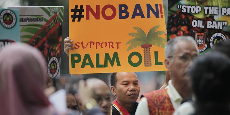 La Ue cambia idea: l'olio di palma non è pericoloso