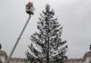 Raggi dice che l'albero di Natale di Roma tornerà «a nuova vita»