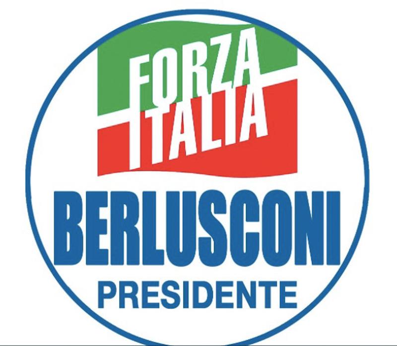 Sul simbolo di Forza Italia per le elezioni politiche del 4 marzo ...