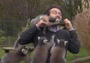 Rischi del mestiere del giornalista: l'attacco dei lemuri