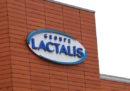12 milioni di scatole di latte in polvere di Lactalis sono state ritirate dal mercato
