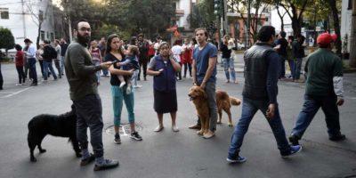 Nel sud del Messico c'è stato un terremoto di magnitudo 7.2