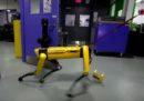 Quel robot che si apre da solo la porta è veramente cocciuto