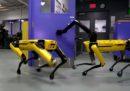 Ora i robot di Boston Dynamics si tengono la porta a vicenda