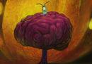 Il nostro cervello produce nuovi neuroni?