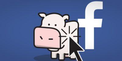 Un'app sulle mucche ci insegna qualcosa su come funziona Facebook
