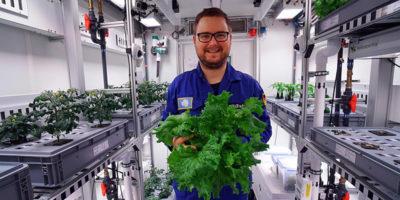 Questa insalata è stata coltivata in Antartide