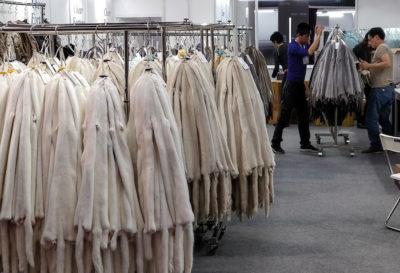 Los Angeles ha vietato la vendita di pellicce