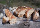 Il panino-tasca