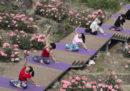 Cosa vi serve se volete cominciare a fare yoga