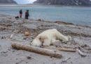 Isole Svalbard, Norvegia