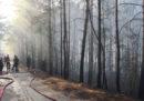 Il governo greco dice di avere «indizi concreti» che gli incendi di questi giorni siano stati dolosi