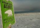 Un orso polare ha ucciso un uomo sull'isola di Sentry, in Canada