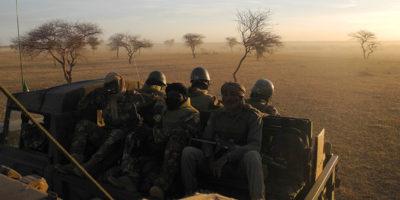 Almeno dieci persone sono state uccise nel nord-est del Mali, vicino al confine con il Niger
