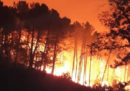 Il grosso incendio vicino a Pisa