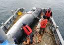 La richiesta del Giappone di poter cacciare le balene per scopi commerciali è stata respinta