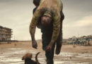 """""""Dogman"""" è il candidato italiano all'Oscar per il miglior film straniero"""