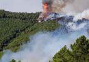 È stato fermato un sospettato per il grande incendio sul Monte Serra in provincia di Pisa a fine settembre