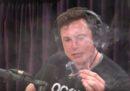 Elon Musk ha fumato un po' di erba, in diretta su YouTube
