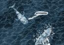 La balena renziana