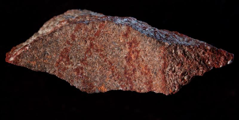 Il primo disegno della storia? Ha 73mila anni