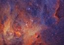 Stelle e nebulose - Menzione speciale