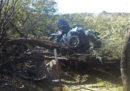 Una donna è sopravvissuta per sei giorni nel deserto dell'Arizona dopo un incidente in auto
