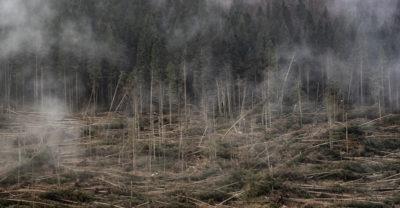 Fotografie dall'altopiano di Asiago