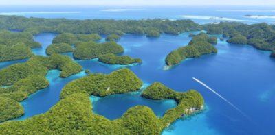 Nell'isola di Palau verranno vietate le creme solari dannose per i coralli
