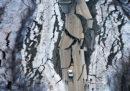 C'è stato un terremoto di magnitudo 7.0 in Alaska, con danni a strade ed edifici