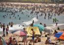 In Australia sta facendo molto più caldo del normale e c'è un altissimo rischio di incendi boschivi