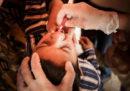I casi di poliomielite derivata dal vaccino